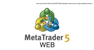 metatrader-5-web